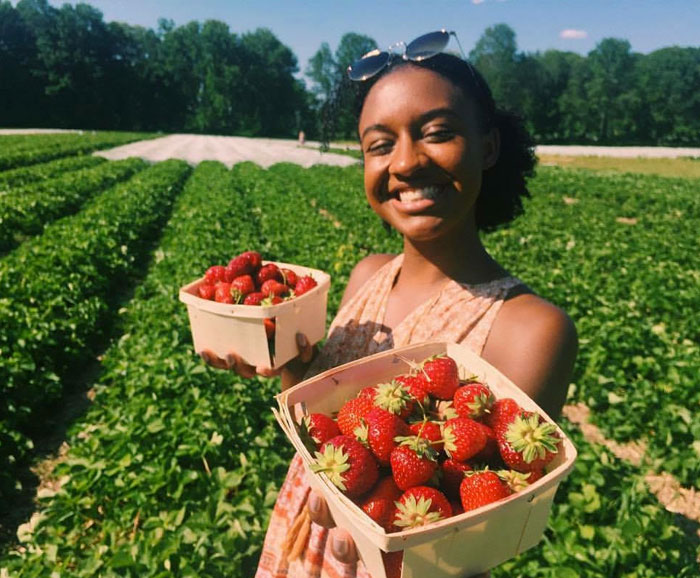 Ashia Aubourg holds picked strawberries in a field