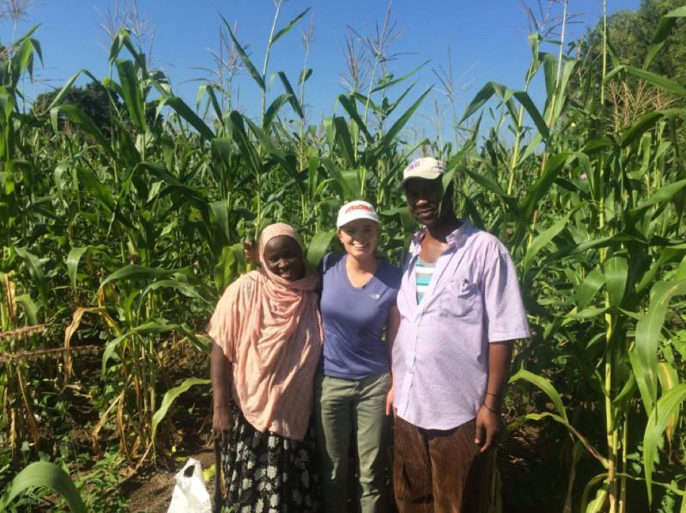Three people standing in a green corn field