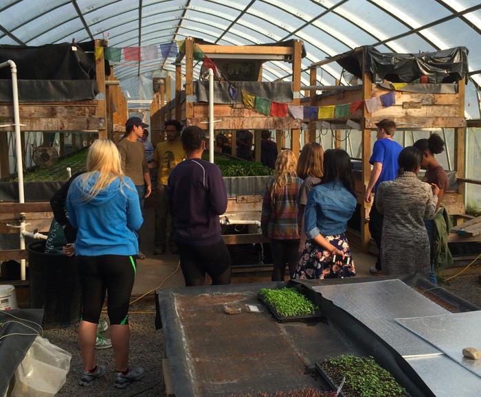 Food studies students visiting a greenhouse at Main Street Farms.