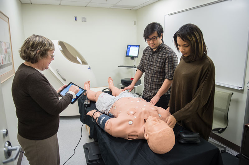 Two students and a professor work with a medical simulation manikin