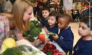 Public health nutrition professionals promote healthy behavior in a variety of contexts, such as ensuring that communities have access to fresh and nutritious locally grown food.