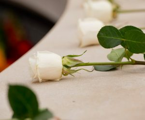 White Roses at the Place of Remembrance for the Rose-Laying Ceremony