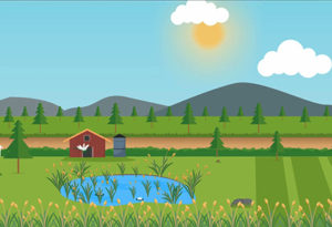 wetlandrestoration