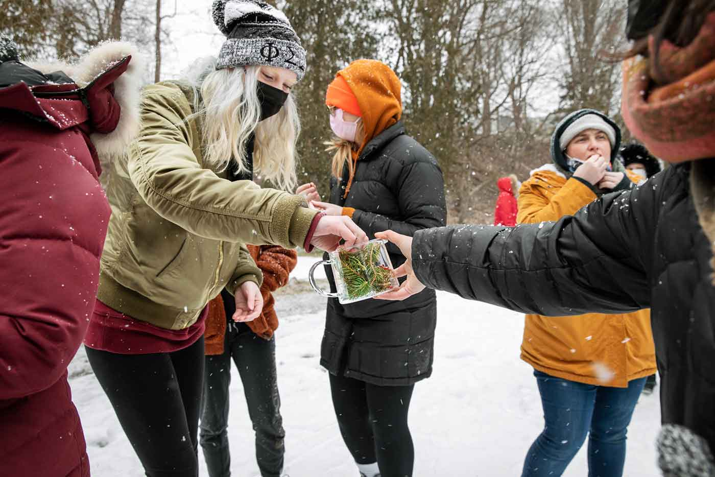 Students are outside in a snowy field collecting plants